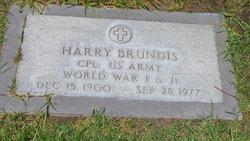 Harry J. Brundis