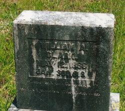 William Andrew Clark