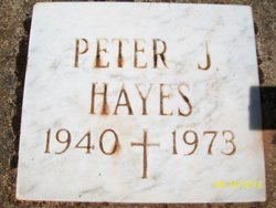 Peter J Hayes