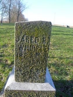 Jared Whipple