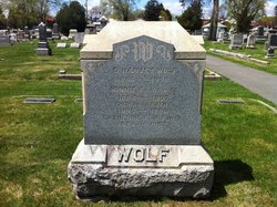 David Harvey Harry Wolf