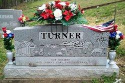 Carrie Frances Lounora <i>Felts</i> Turner