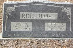 Annie Rebecca <i>Lloyd</i> Breedlove