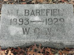 Martin Lewis Barefield