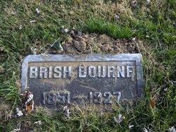 Fabricius Curtis Brish Bourne