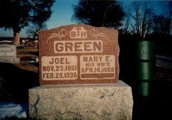 Joel Green
