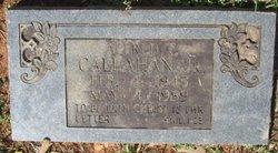 Alfred Thomas Callahan, Jr