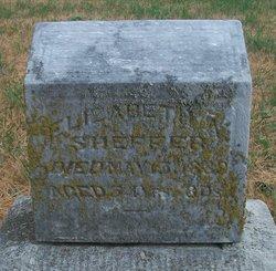 Elizabeth Sheffer