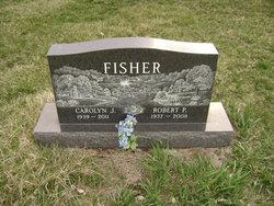 Carolyn J Fisher