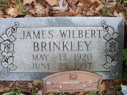 James Wilbert Brinkley