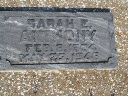 Sarah Elizabeth <i>Stiles</i> Anthony