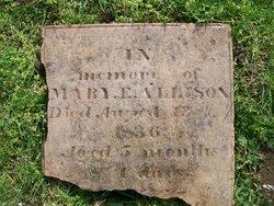 Mary Elizabeth Allison
