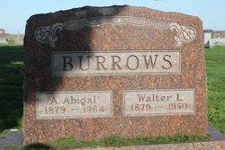 Aurora Abigail Abbie <i>Clark</i> Burrows