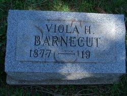 Viola H Barnecut