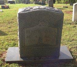 Hester Adams