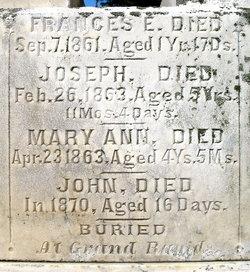 Mary Ann Farrell