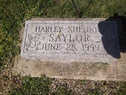Harley Shennea Saylor