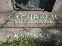 David J Bachrach