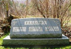 Harold Jay Fellows