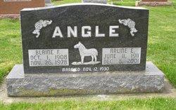 Arlene E. <i>Barnett</i> Angle