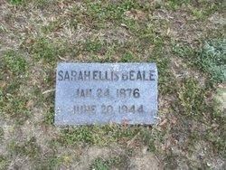 Sarah Elizabeth Sally <i>Ellis</i> Beale