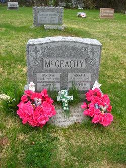 David A. McGeachy