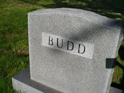 Harvey Budd