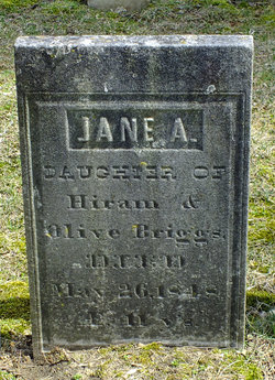 Jane A. Briggs