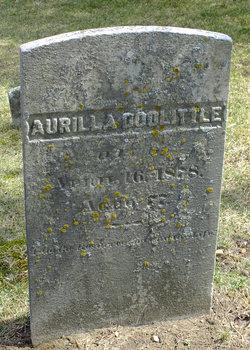 Aprill A. Doolittle