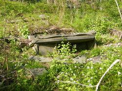 Dorsey Graveyard at Arcadia