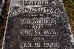 Hester <i>Applegate</i> Adcock
