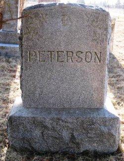 Peter Samuel Peterson