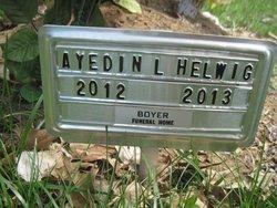 Ayedin Levi Helwig