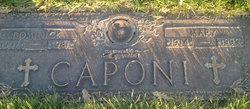 Dominick R. Caponi