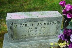 Elizabeth Virginia <i>Craft</i> Anderson