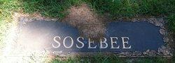 Daisy C. Sosebee