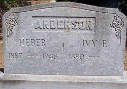Ivy Belle <i>Furniss</i> Anderson / Sjostrom