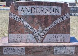 Martin E Anderson