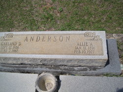 Allie <i>Adams</i> Anderson