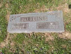 Leta Jane <i>Davis</i> Fortune