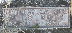 Anthony R. Adkins