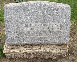 Joe Edmund Waneck