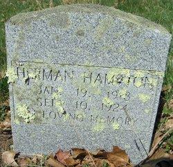 Tracy Herman Hampton
