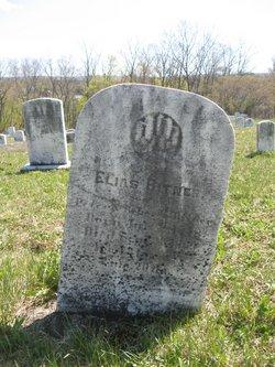 Elias Bittner