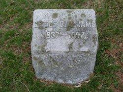 George B Abrams
