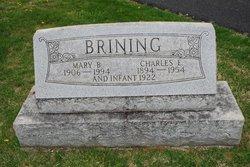 Charles E. Brining