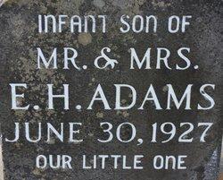 E H Adams