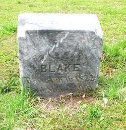 Harriet Blake