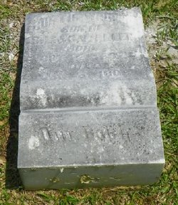 Curtis Wright Allen