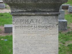 Anna M Brechenser